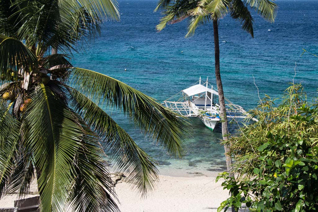 Meerblick Apo Island – Endlich Tauchen lernen| SOMEWHERE ELSE