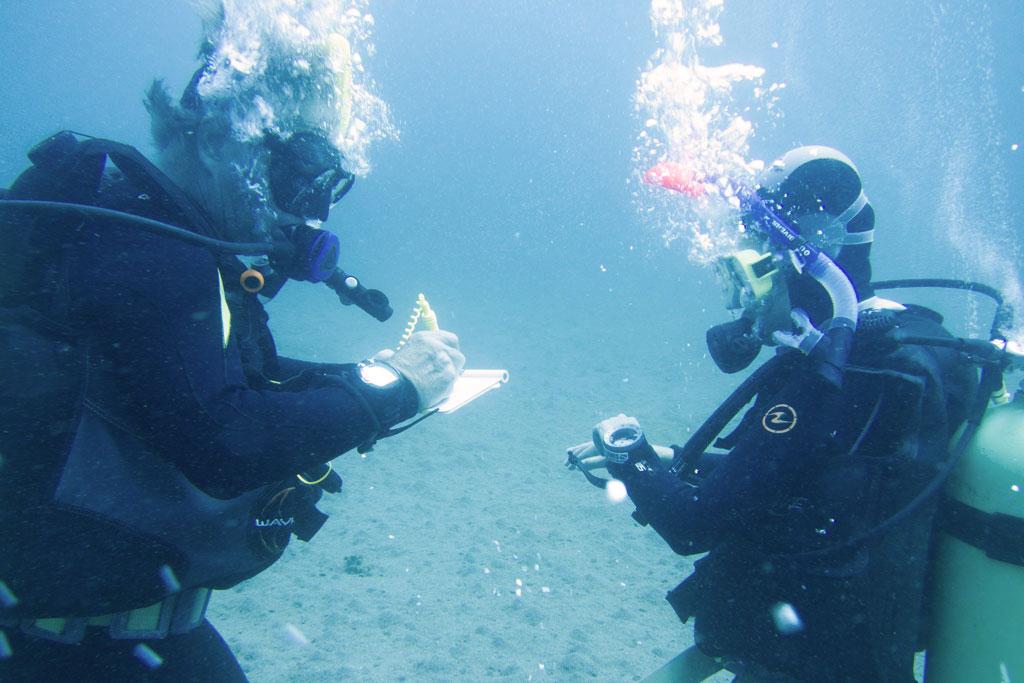 Open Water Tauchkurs auf Apo Island – Endlich Tauchen lernen | SOMEWHERE ELSE