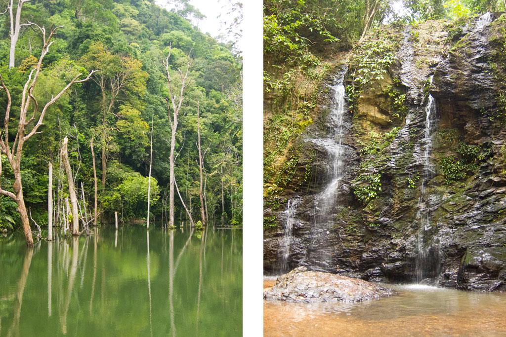 Dschungel im Landesinneren von Ko Lanta – Thailändische Inseln | SOMEWHERE ELSE