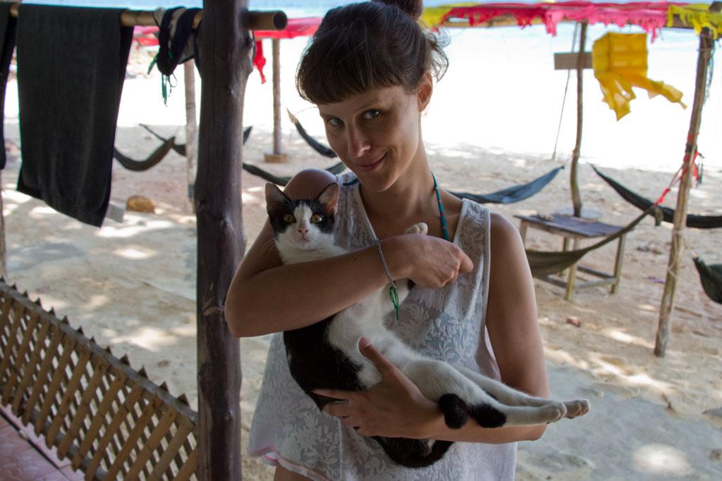 Katze auf Ko Phi Phi – Thailändische Inseln | SOMEWHERE ELSE