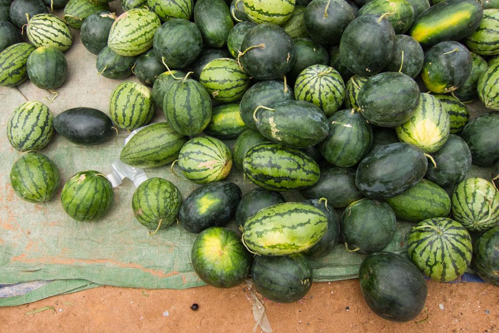Leben in Kambodscha – Melonen auf dem Markt | SOMEWHERE ELSE