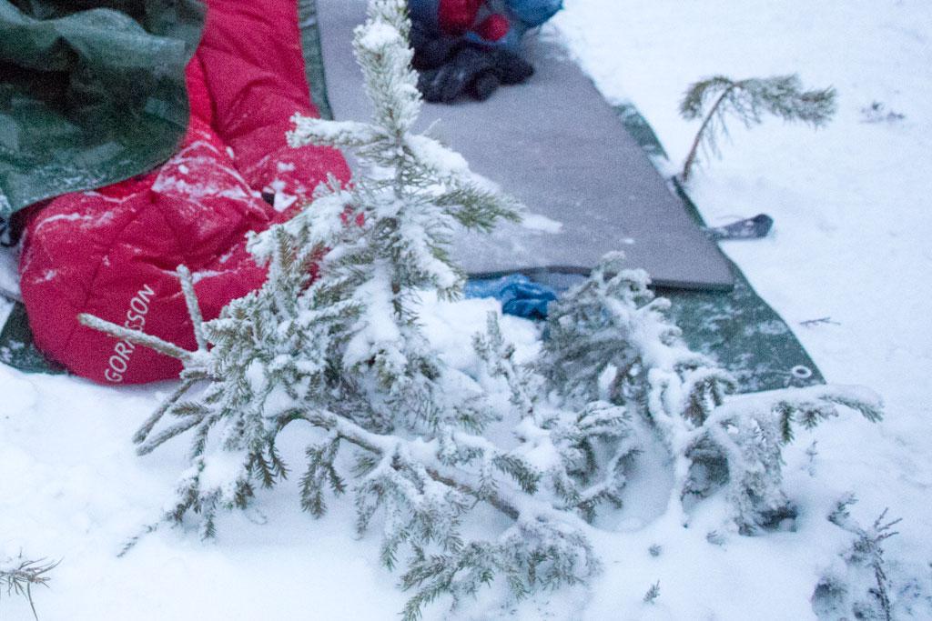 Mit Schlittenhunden durch Schwedens Winterlandschaft – Lager für die Nacht | SOMEWHERE ELSE