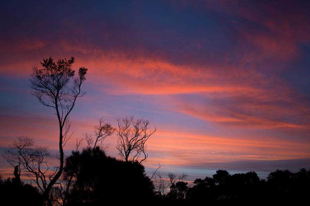 Australische Tierwelt – Sonnenuntergang im Wilsons Promontory Nationalpark | SOMEWHERE ELSE