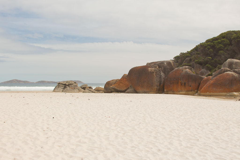 Australische Tierwelt – Squeaky Beach im Wilsons Promontory Nationalpark | SOMEWHERE ELSE