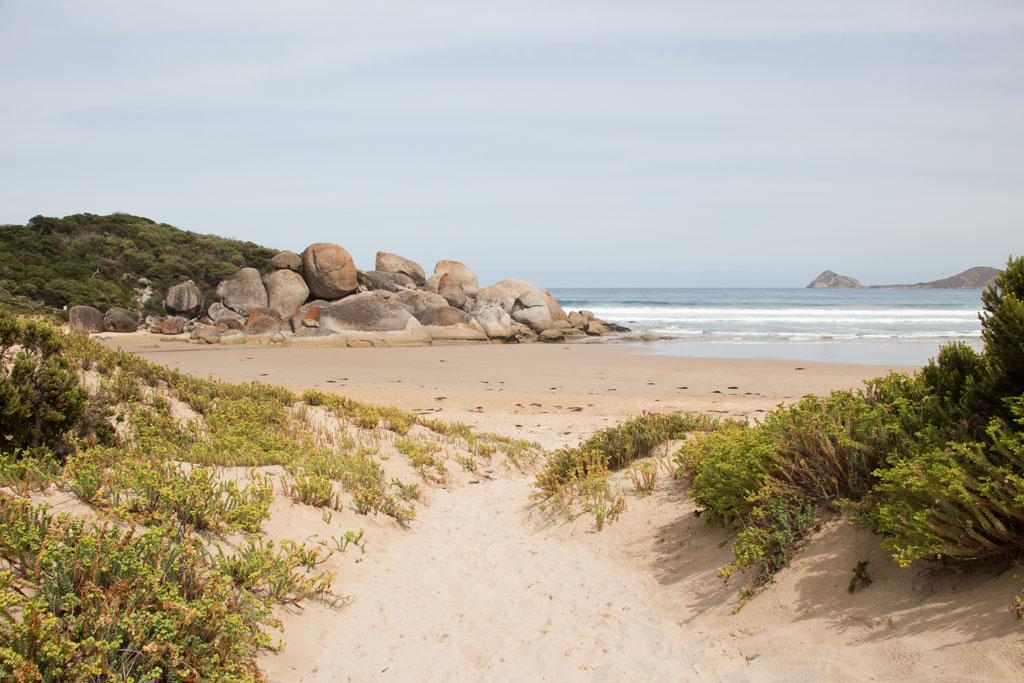Australische Tierwelt – Strand von Whiskey Bay im Wilsons Promontory Nationalpark | SOMEWHERE ELSE
