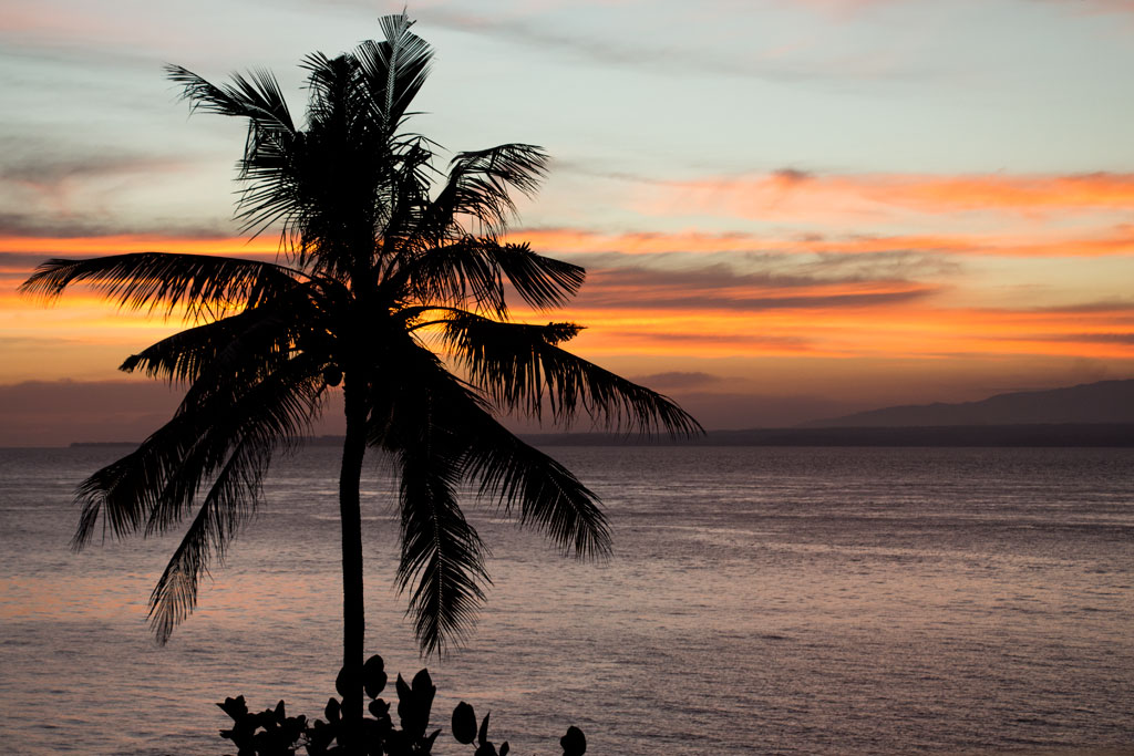 Liebster Award – Lieblingsmoment Sonnenuntergang auf Apo Island | SOMEWHERE ELSE