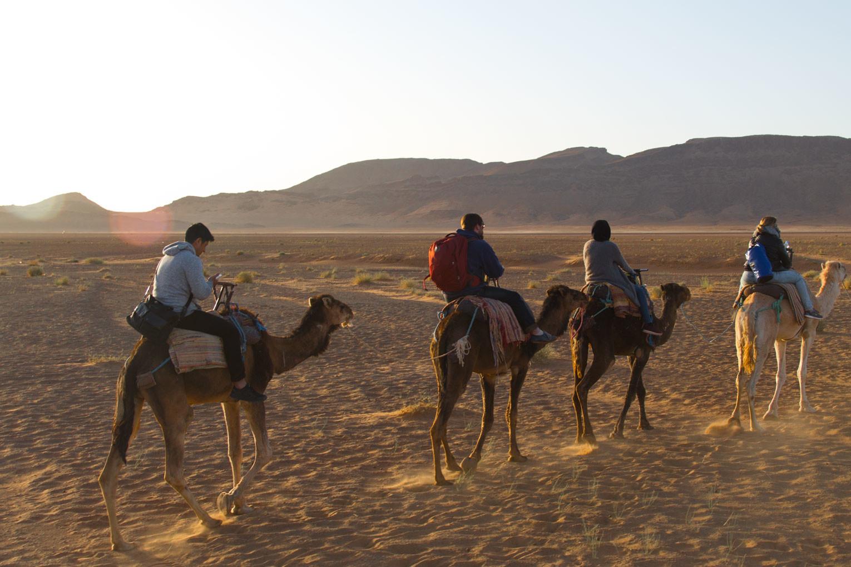 Marokko Trip –Wüste von Zagora – Digitale Nomaden reiten Kamele |SOMEWHERE ELSE