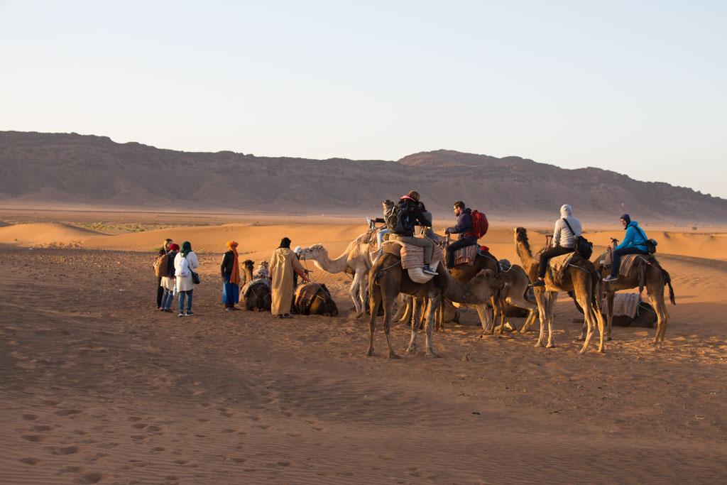 Marokko Trip –Wüste von Zagora – Gruppe bereit zum Kamelreiten |SOMEWHERE ELSE