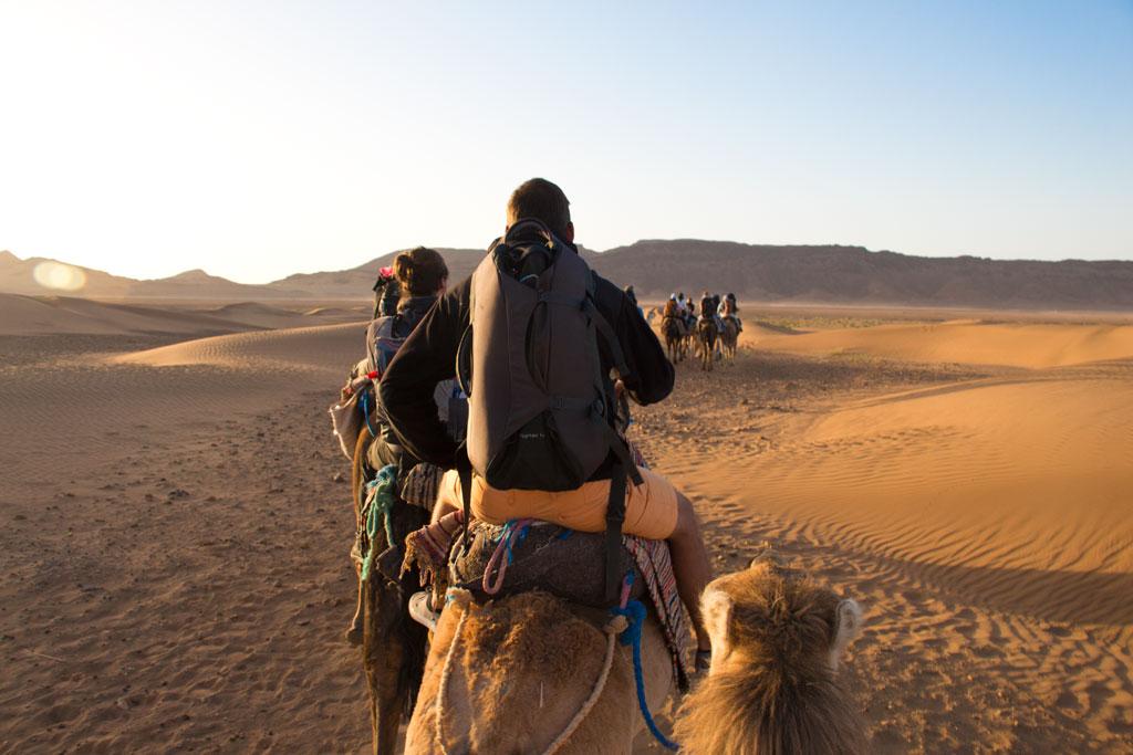 Marokko Trip –Wüste von Zagora – Karawane von digitalen Nomaden auf Kamelen |SOMEWHERE ELSE