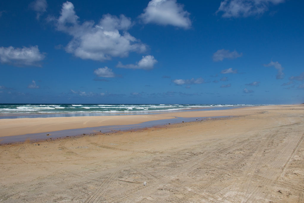 Tagesausflüge in Australien – 75 Miles Beach Fraser Island | SOMEWHERE ELSE