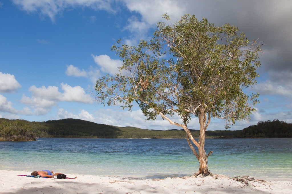 Tagesausflüge in Australien – Lake McKenzie auf Fraser Island | SOMEWHERE ELSE