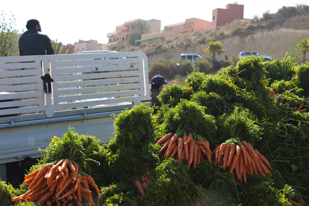 Marokkanische Gerichte – Berg Karotten auf dem Markt in Aourir | SOMEWHERE ELSE