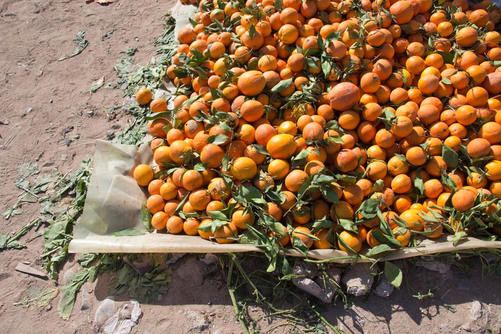 Marokkanische Gerichte – Berg Orangen auf dem Markt in Aourir | SOMEWHERE ELSE