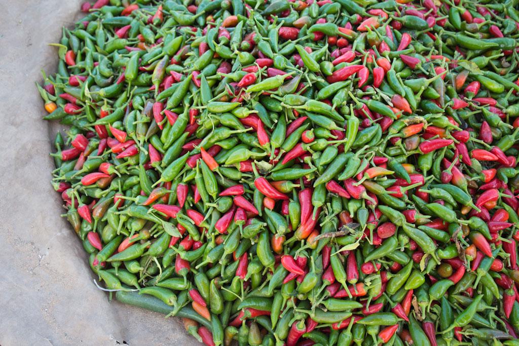 Marokkanische Gerichte – Rote und grüne Chili auf dem Markt in Aourir | SOMEWHERE ELSE