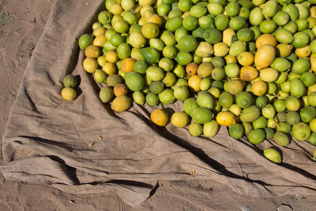 Marokkanische Gerichte – Zitronen auf dem Markt in Aourir | SOMEWHERE ELSE