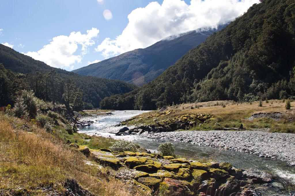 Neuseeland Südinsel Landschaften – Haast Pass Bach Wald Wiese Kulisse | SOMEWHERE ELSE