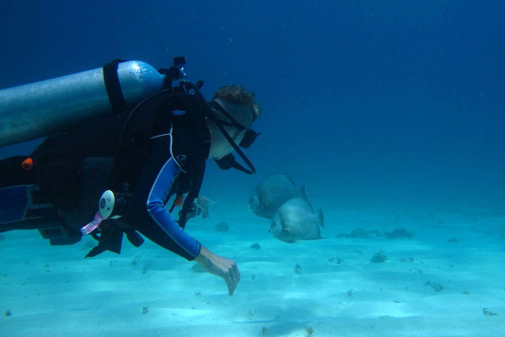 Tauchen in Mexiko – MUSA Unterwassermuseum Taucher und Fische | SOMEWHERE ELSE
