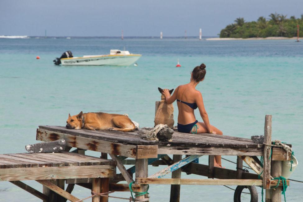 Reiseerfahrungen Momente – Mit Hunden auf Bootssteg in Französisch Polynesien | SOMEWHERE ELSE