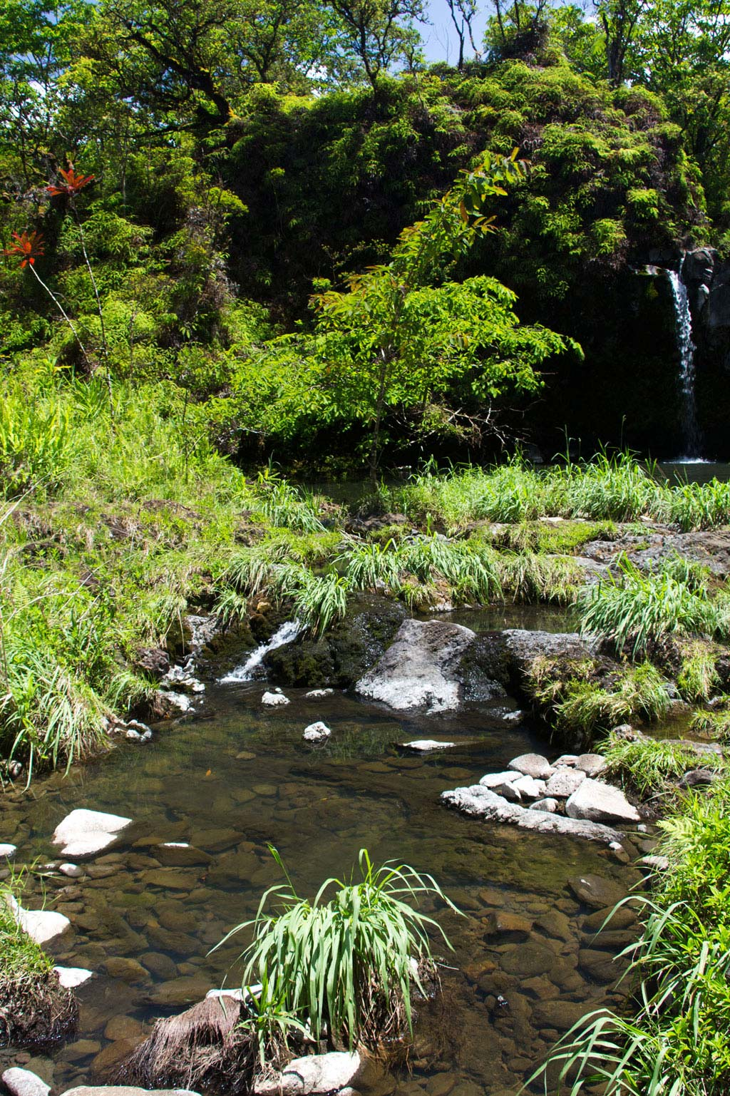 Maui Hawaii – Puaa Kaa Fall Wasserfall an der Road to Hana | SOMEWHERE ELSE