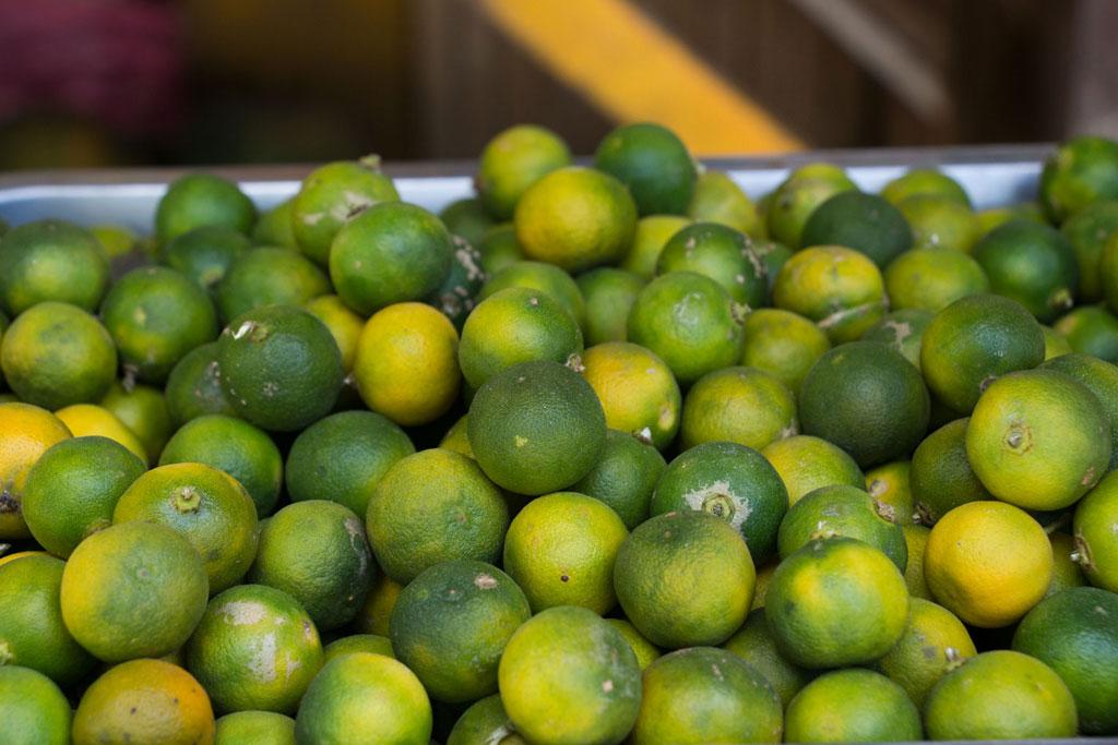 Port Barton – Früchte Calamansis | SOMEWHERE ELSE