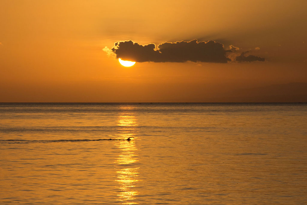 Rückblick – Philippinen Schwimmer Sonnenuntergang Siquijor | SOMEWHERE ELSE